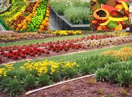 Te koop Tuinbouwbenodigheden
