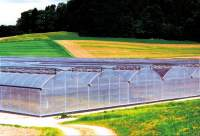 Te koop Greenhouse constructions > foil